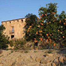 Relleu_Spain05