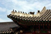 South_Korea10